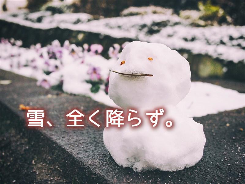 yukifurazu