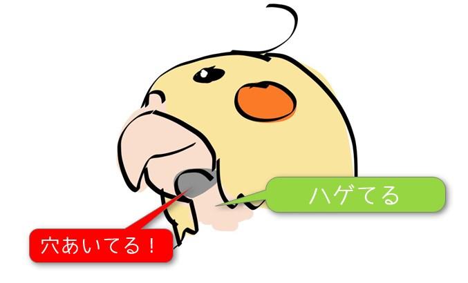 kuchibasi2
