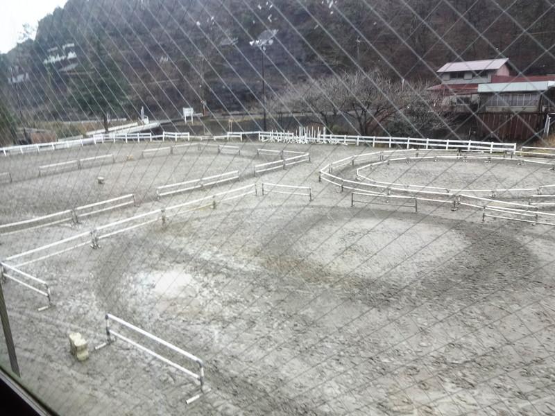 乗馬クラブクレイン受付ロビーから見た馬場