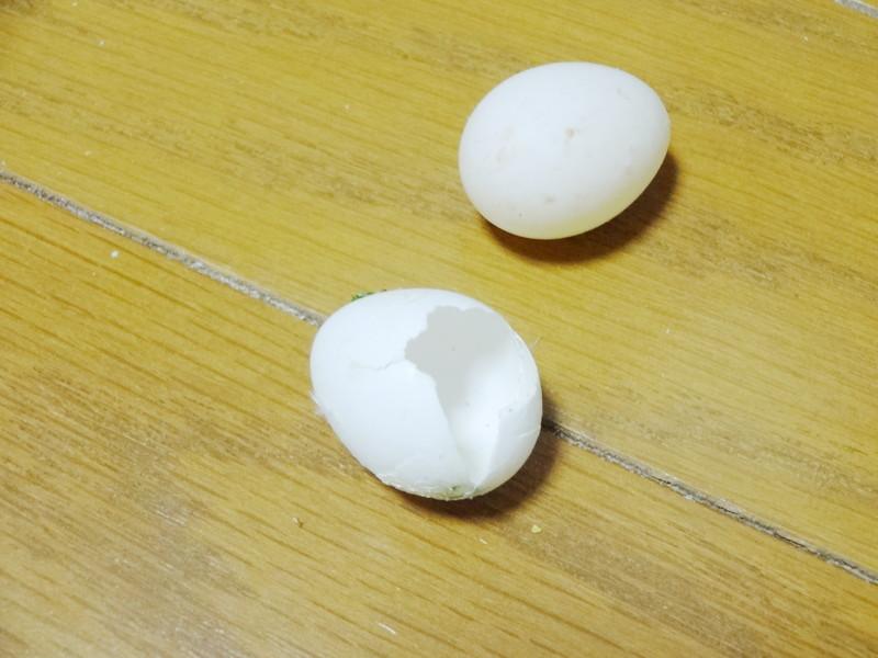 オカメインコの卵