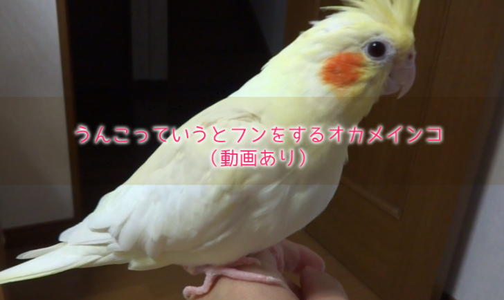 2016-09-16_20h55_53