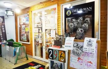 OWL☆WAN入り口