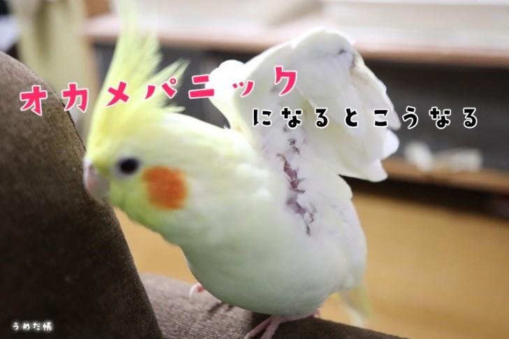 170513[7]