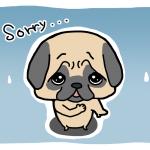 sorry2-6