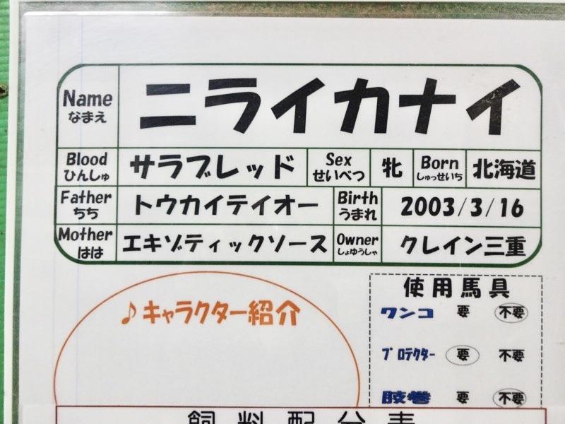 ニライカナイのキャラクター紹介が…;;
