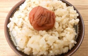 玄米のみ最終日ラストのお祝いにうめぼし!